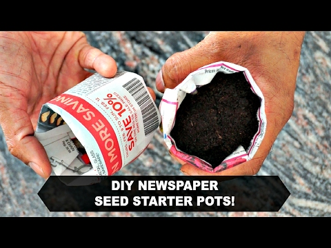 How to Make Newspaper Pots!