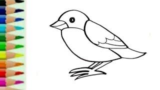 900+  Gambar Burung Untuk Anak Sd HD Paling Bagus Gratis