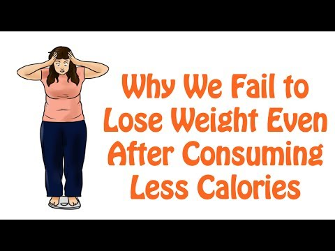 12. Calculating Daily Calorie Needs Accurately