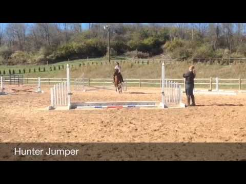 DIY: Jump Standards+Jump Poles+Jump Cups