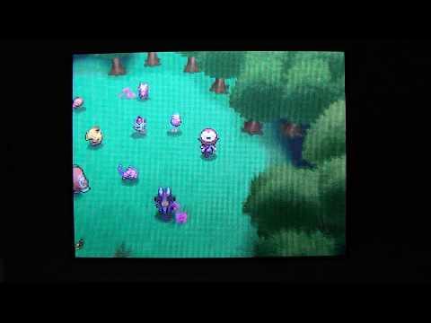Pokemon White All Pokemon from Dream World