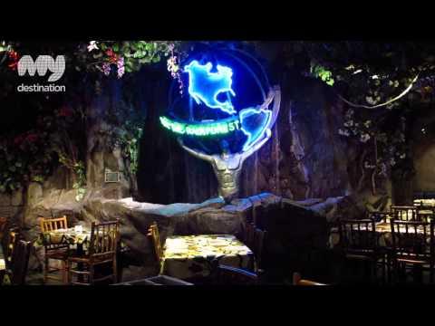Rainforest Cafe, London - My Destination Video
