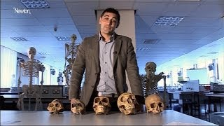 Creationism and evolution tackled head-on in science lessons | Guardian Investigations