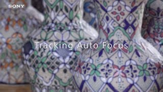 Sony | PXW-Z90 & HXR-NX80 | HDR(HLG) sample footage #5 - Tracking Auto Focus