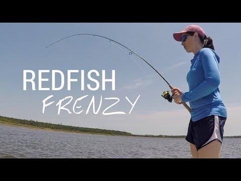 Redfish Frenzy Part 1   Fishing Charleston SC