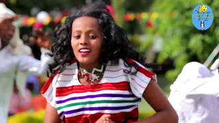 New ethiopian music 2019 ahmed teshome HD Mp4 Download Videos - MobVidz