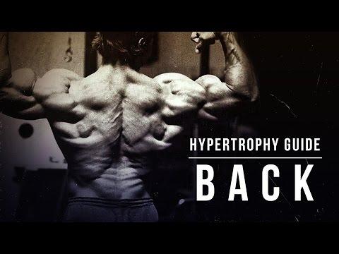 Hypertrophy Guide | Back | JTSstrength.com