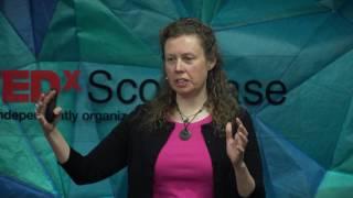 Putting the brakes on runaway ice sheet retreat in Antarctica   Christina Hulbe   TEDxScottBase