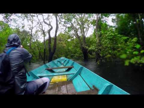 AMAZON RAINFOREST - BRAZIL Vacation HD | GoPro