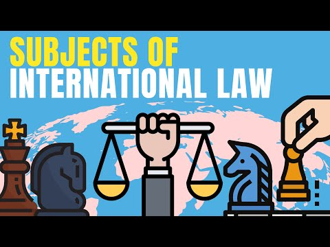Subjects of International Law explained | Lex Animata