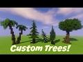 Minecraft Custom Tree Tutorial!