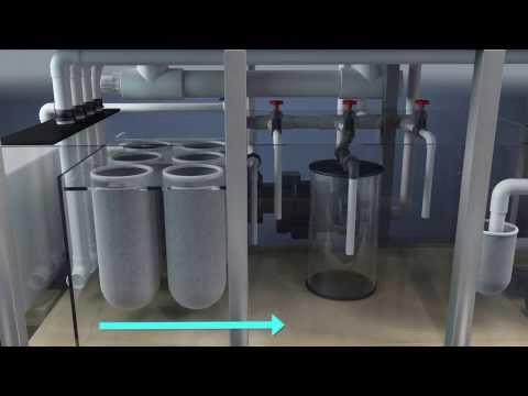 Part 1: Sumps and Design of 800 Gallon Aquarium