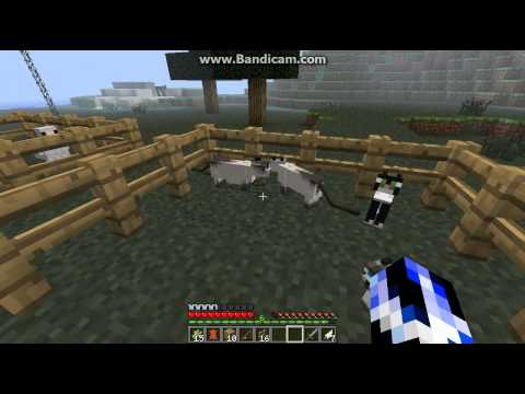 Minecraft how to breed ocelots