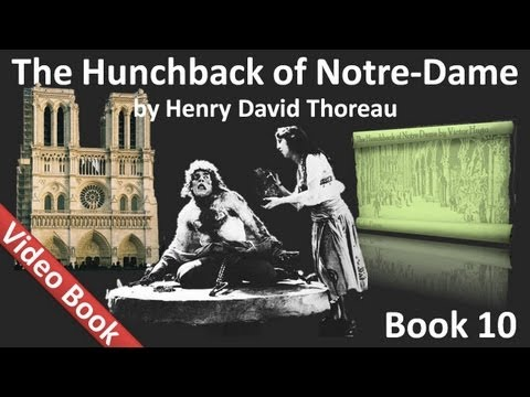 Book 10 - The Hunchback of Notre Dame Audiobook by Victor Hugo (Chs 1-7)