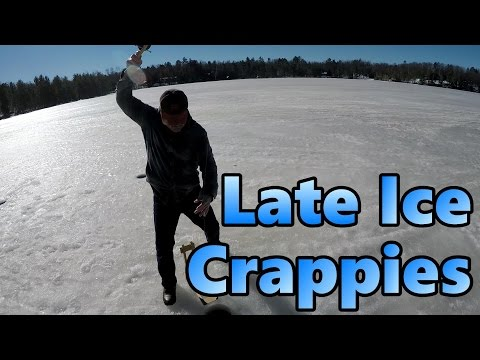Ice Fishing Crappie – How We 3x The Number Of Fish We Caught By Using Tip-Downs