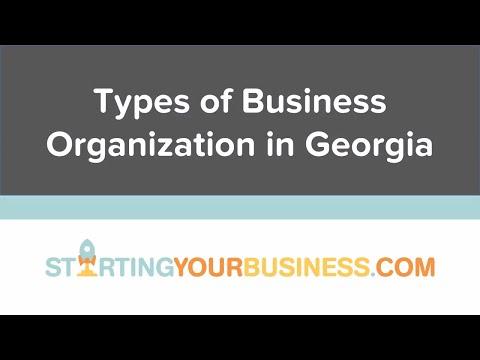 Types of Business Organization in Georgia - Starting a Business in Georgia