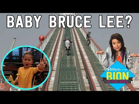 Dirt Bikes on Roller Coasters & Baby Bruce Lee