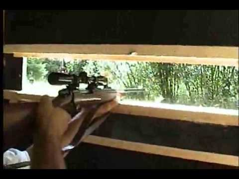 How to Build a Deer Blind with Cedar Hinged Windows