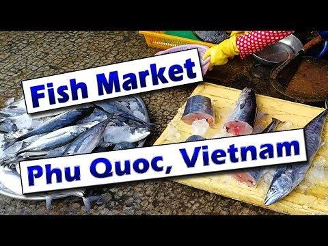 Experience An Asian Fish Market - Phu Quoc, Vietnam