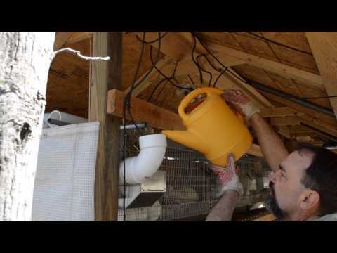 Raising Rabbits, Breeding Rabbits, Rabbit Hutch