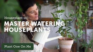 Ep 120. Houseplant 101: How to Water Houseplants Properly