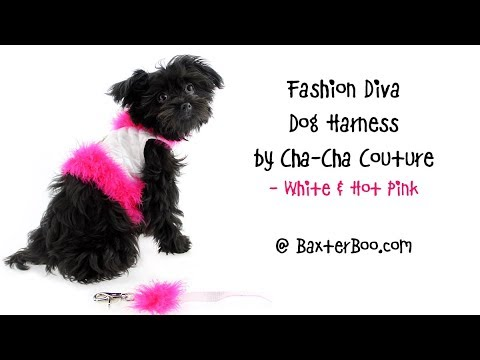 Fashion Diva Dog Harness by Cha-Cha Couture - White & Hot Pink