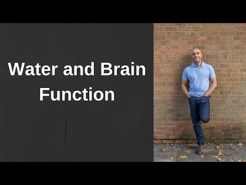 Water and Brain Function