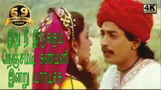 Download இது நீ இருக்கும் நெஞ்சமடி-Ithu Nee Irukkum S P B Love Melody Sogam Tamil H D Song Video