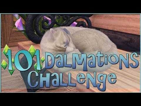A Furry Feline on the Farm?!    Sims 3: 101 Dalmatians Challenge  - Episode #78