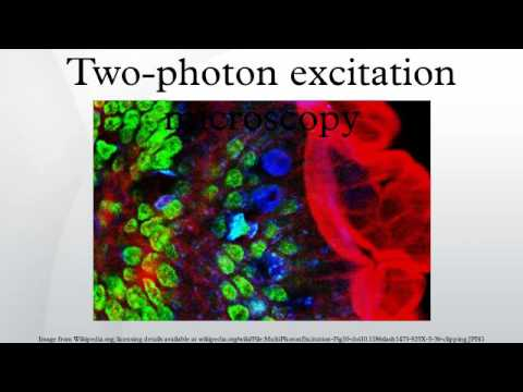 Two-photon excitation microscopy