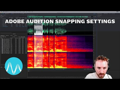 Adobe Audition Snapping Settings