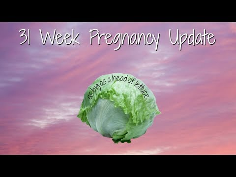 31 Week Pregnancy Update   Contractions, Cervix Softening, Dilation