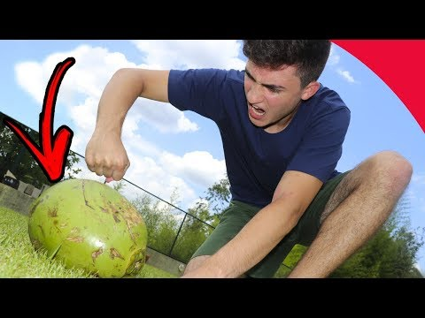 AMAZING WAYS TO OPEN A COCONUT