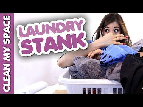 Laundry Stank! (Clean My Space)