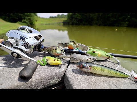 Summer Fishing Lure that NEVER FAILS!!! (Bank Fishing 5 NEW Lakes & Ponds)
