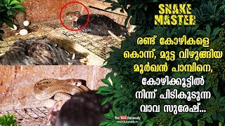 Vava Suresh catches a cobra that enters hen cage   Snakemaster EP 461   Kaumudy TV