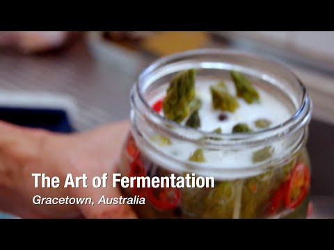 The Art of Fermentation in Gracetown, Australia