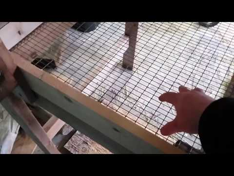 My Rabbit Hutch & Tips For Building Your Own