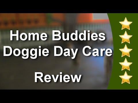 Dog Daycare Toronto Five Star Review