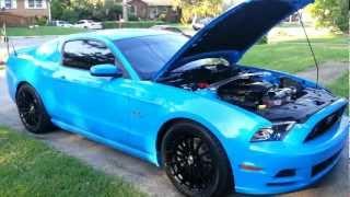 2013 Mustang GT Premium Bama Ghost Cam - PakVim net HD