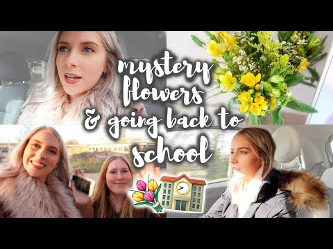 GOING BACK TO MY OLD SCHOOL!📚Weekly #8