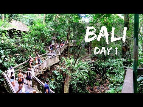 Bali 2018 Vlog : Day 1   corallista