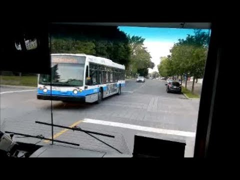MONTREAL CITY BUS RIDE WITH DRIVER FRIEND