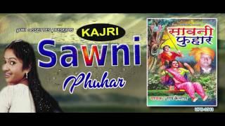 सुपरहिट भोजपुरी- कजरी - सावन की फुहार - 2017 |by Ram Kailash Yadav |Rain Songs | Jukebox
