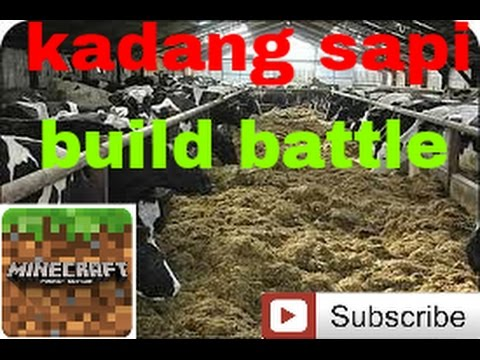 Build battle minecraft pe (indonesia)