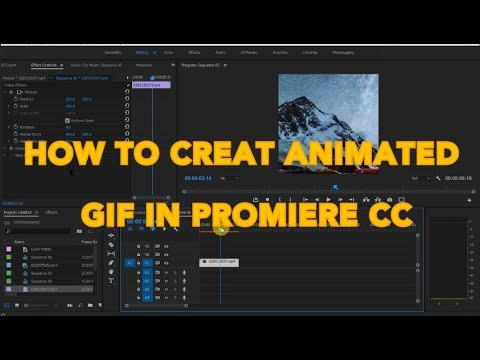 HOW TO MAKE ANIMATED GIF IN PREMIERE PRO CC