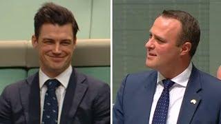 Australian MP proposes to gay partner in parliament debate