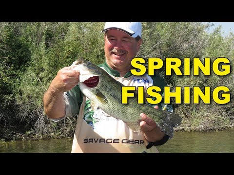 Proven Spring Bass Fishing Lures and Tactics | Bass Fishing