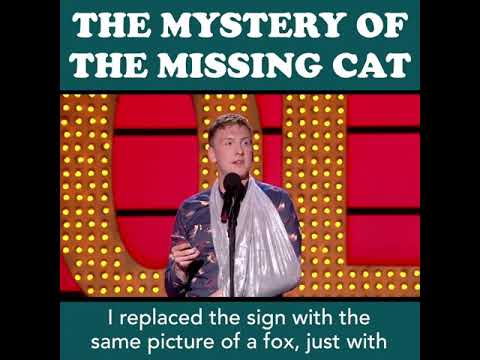😹 Joe Lycett's missing cat will make your day