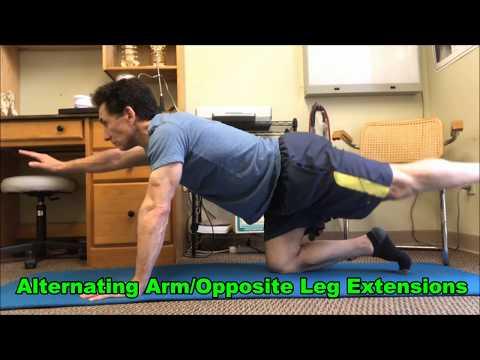 Core Exercises - The Basics